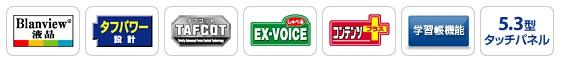 exvoice