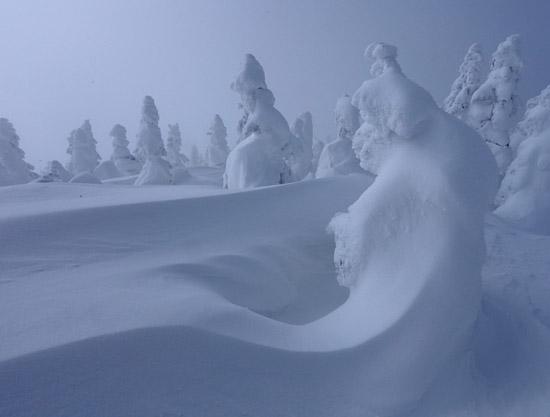 snow_monster_22