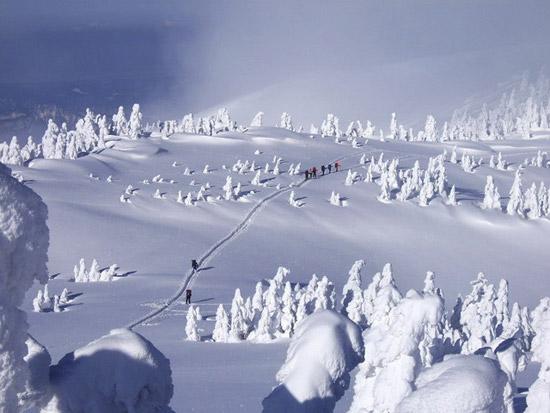 snow_monster_25