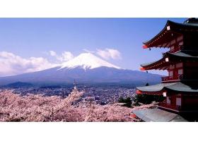 รัฐบาลญี่ปุ่น มอบทุนปริญญาตรี เรียนฟรีมีเงินเดือนในประเทศญี่ปุ่น ห้ามพลาด!!